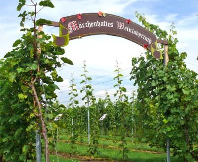 Spazieren, Raten und Knobeln im märchenhaften Weinlabyrinth