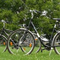 Fahrradverleih in Sörnewitz bei Meißen