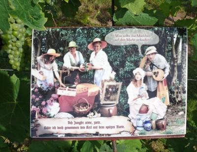 Märchenrätsel im Weinlabyrinth