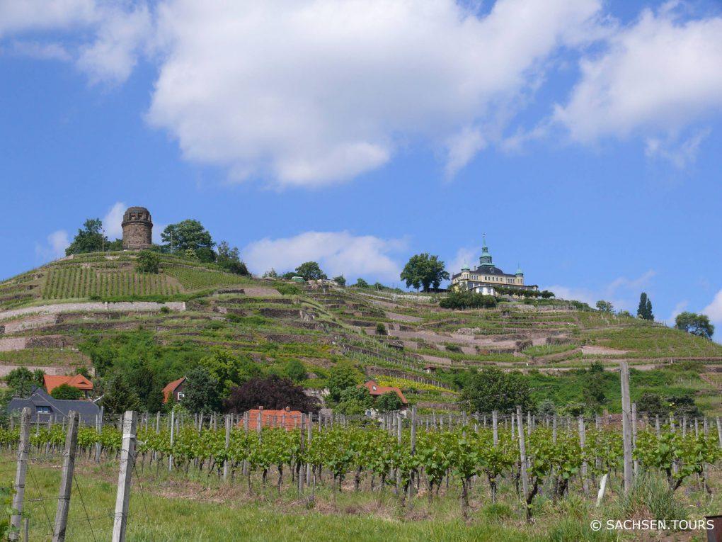 Spitzhaus in Radebeul